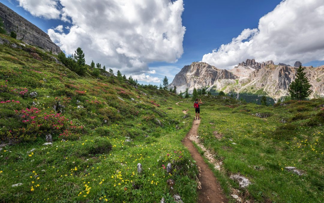 The Best Hiking Parks Near Me in the USA