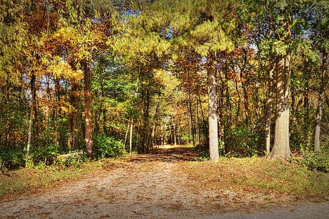 Best Trails for Hiking in Ohio
